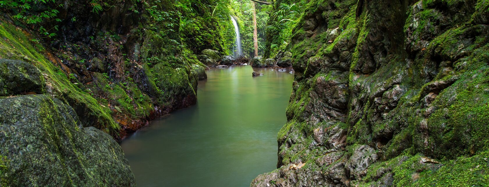 10 reasons why the locals love Lamington National Park